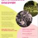Inšpiratívny vzdelávací program  22.-29.8.21